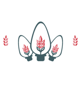 Country Lights Festival Logo